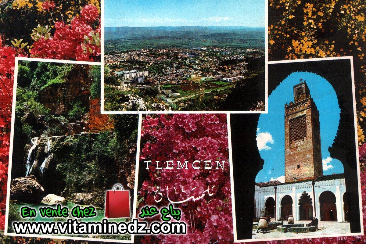 Lot de 10 cartes postales de Tlemcen